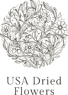 USA Dried Flowers